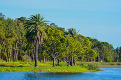 A beautiful day for a walk and the view of the island at John S. Taylor Park in Largo, Florida. A beautiful day for a walk to the island at John S. Taylor Park Stock Photo