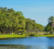 A beautiful day for a walk and the view of the wood bridge to the island at John S. Taylor Park in Largo, Florida. A beautiful day for the view of the wood stock image