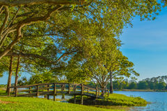 A beautiful day for a walk and the view of the wood bridge to the island at John S. Taylor Park in Largo, Florida. The view of the wood bridge to the island at royalty free stock photo
