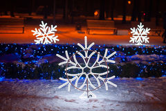 Beautiful decor of snowflakes in winter Park. Beautiful decor of snowflakes in night winter Park royalty free stock photo
