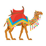 Beautiful decorated camel. With bright ornaments and adorns Stock Photography
