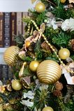A beautiful decorated Christmas tree on the background of a bookshelf with many books of different colors. Christmas background im. Age of the library Stock Photography