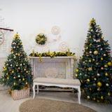 Two xmas trees royalty free stock photography