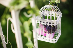 Beautiful decorative cage with beautiful flowers Royalty Free Stock Photo