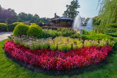 Beautiful decorative flowerbed with small red flowers and green shrubs against the background of a lake with fountains. For your design stock images