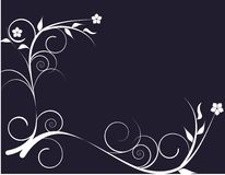 Beautiful decorative flowers Royalty Free Stock Image