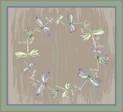 Beautiful decorative framework with dragonfly. Greeting card wit Royalty Free Stock Photo