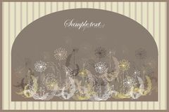 Beautiful decorative framework with flowers. Greet. Ing card with dandelion Royalty Free Stock Image