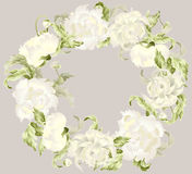 Beautiful decorative framework with peony. Stock Photos