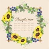 Beautiful decorative framework with a sunflower an. D blackberry berries.Illustration Stock Photo