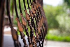 Beautiful decorative metal elements forged wrought iron gates.  royalty free stock images