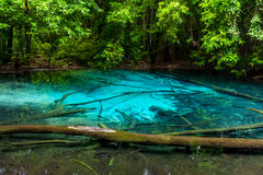 Beautiful deep forest lake with crystal water. Real color ot the lake. royalty free stock image