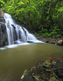 Beautiful Deep forest waterfall call Pangsida waterfall Royalty Free Stock Images