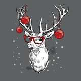 Beautiful deer with Christmas balls on the glasses. Royalty Free Stock Image