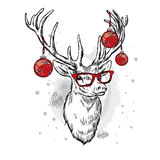 Beautiful deer with Christmas balls on the glasses. Stock Photo