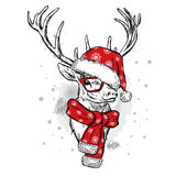 Beautiful deer in Christmas hat, scarf and glasses. Royalty Free Stock Images