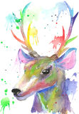 Beautiful deer head. Watercolor illustration stock photo