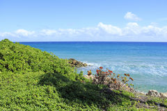 Beautiful Deerfield Beach Coast Royalty Free Stock Photo