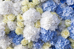 beautiful and delicate bouquet of white rose Royalty Free Stock Photography