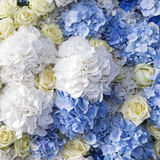 Beautiful and delicate bouquet Stock Images