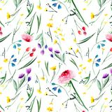 Beautiful delicate bright floral yellow pink red violet purple blue delphiniums rose and cornflowers pattern with buds, leaves and. Grass watercolor hand Royalty Free Stock Images
