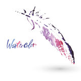 Beautiful delicate feathers painted in watercolor.  Royalty Free Stock Photos