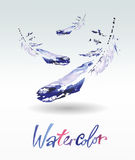 Beautiful delicate feathers painted in watercolor.  Royalty Free Stock Photo