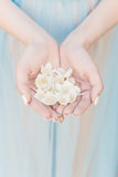 Beautiful delicate hands of a girl with jasmine flowers in their hands, Fine art style Stock Images