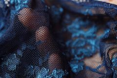 Beautiful delicate openwork dark blue lace in hand Stock Photography