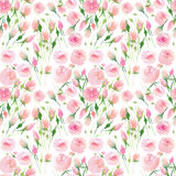 Beautiful delicate tender cute elegant lovely floral colorful spring summer pink and red roses with buds and leaves bouquet waterc. Olor hand illustration Royalty Free Stock Photo