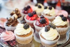 Beautiful delicious cakes. confectionery curry at a festive party. many sweet muffins on a tray.  stock image