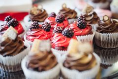 Beautiful delicious cakes. confectionery curry at a festive party. many sweet muffins on a tray.  royalty free stock photography
