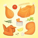 Beautiful delicious fried chicken set of illustrations in cartoon style. Fresh fast food fry meat. Royalty Free Stock Image