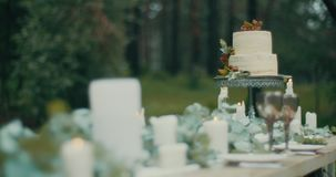 Beautiful delicious two-tiered cake with red berries at table decorated with candles, leves and flowers. Romantic dinner stock footage