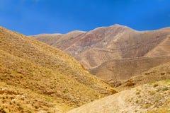 Amazing desert colors under blue sky Royalty Free Stock Image