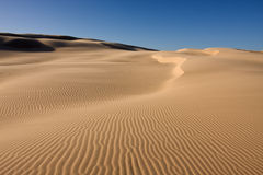 Beautiful desert landscape Stock Photography