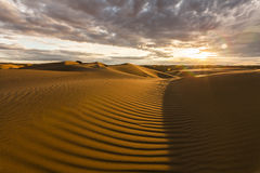 Beautiful desert landscape with a colorful sunset. Stock Images