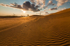 Beautiful desert landscape with sand dunes. Royalty Free Stock Images