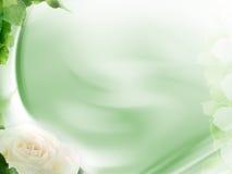 Beautiful design background. Nice design background or fractal element Stock Photos