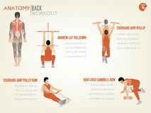 Beautiful design info graphic of abdominal back workout Royalty Free Stock Photos