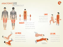 Beautiful design info graphic of abdominal legs workout. Consist of deadlift,lunge,leg press and leg curl Stock Photo