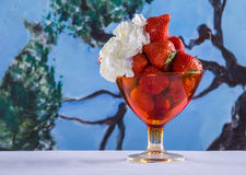 A beautiful dessert of stawberries Stock Photography