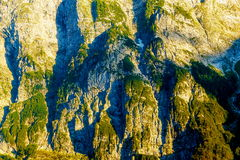 Beautiful detail of alpine mountain rocks covered with moos on sunny day.  Royalty Free Stock Images