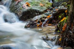 Beautiful detail close up of silky smooth satin soft river flowing in forest fall vivid selective colors Stock Image