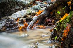 Beautiful detail close up of silky smooth satin soft river flowing in forest fall vivid selective colors Royalty Free Stock Photo