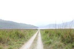 Beautiful Dhikala Grassland near Ram Ganga Reservoir Royalty Free Stock Images