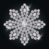 Beautiful diamond flower Stock Images
