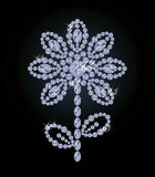 Beautiful diamond flower, vector Stock Photos