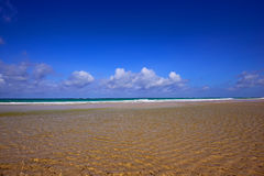 Beautiful of Diani in Kenya Royalty Free Stock Photography