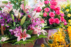 Beautiful different flowers bouquets Stock Images